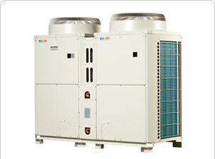 A typical commercial Air Source Heat Pump
